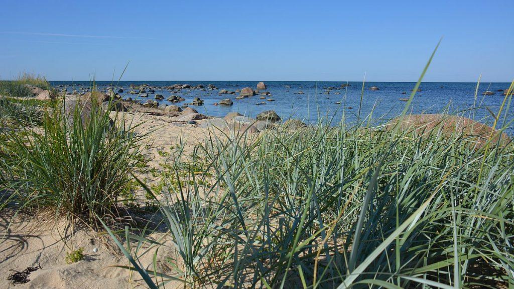 Strand på Dagö i Estland