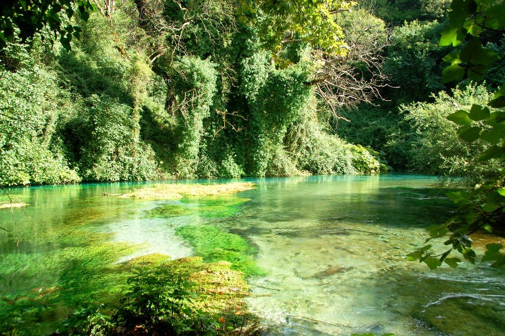 Vattnet runt om källan är så klart att man ser precis allt på botten