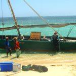 Tanga i Tanzania – ett riktigt äventyr