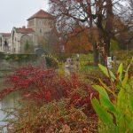 Tata i Ungern – mat och vin i lantlig miljö