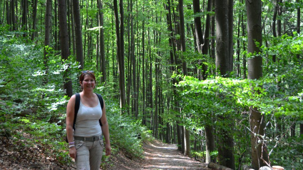 Promenad i tjeckisk skog