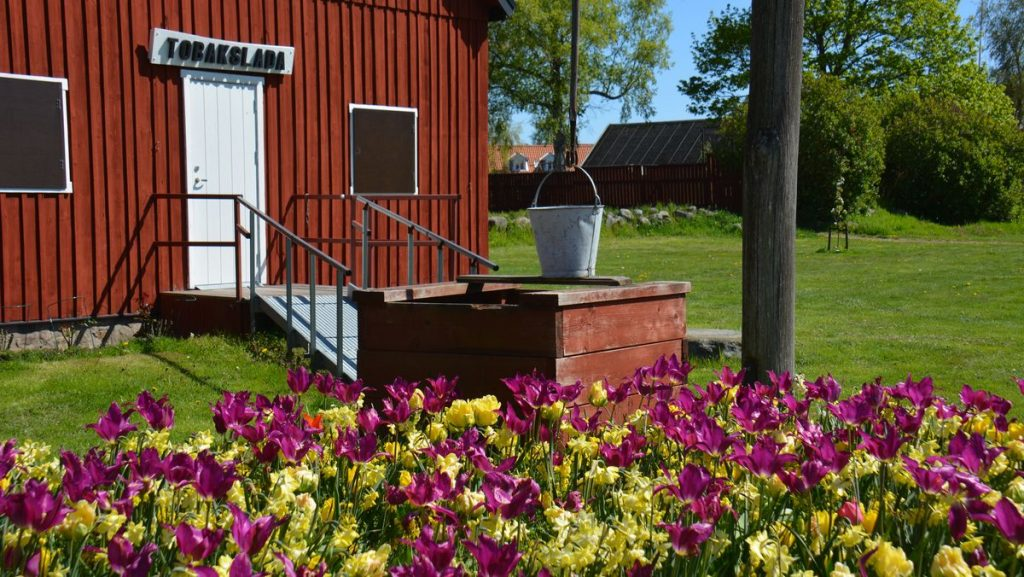 Åhus i Kristianstad kommun