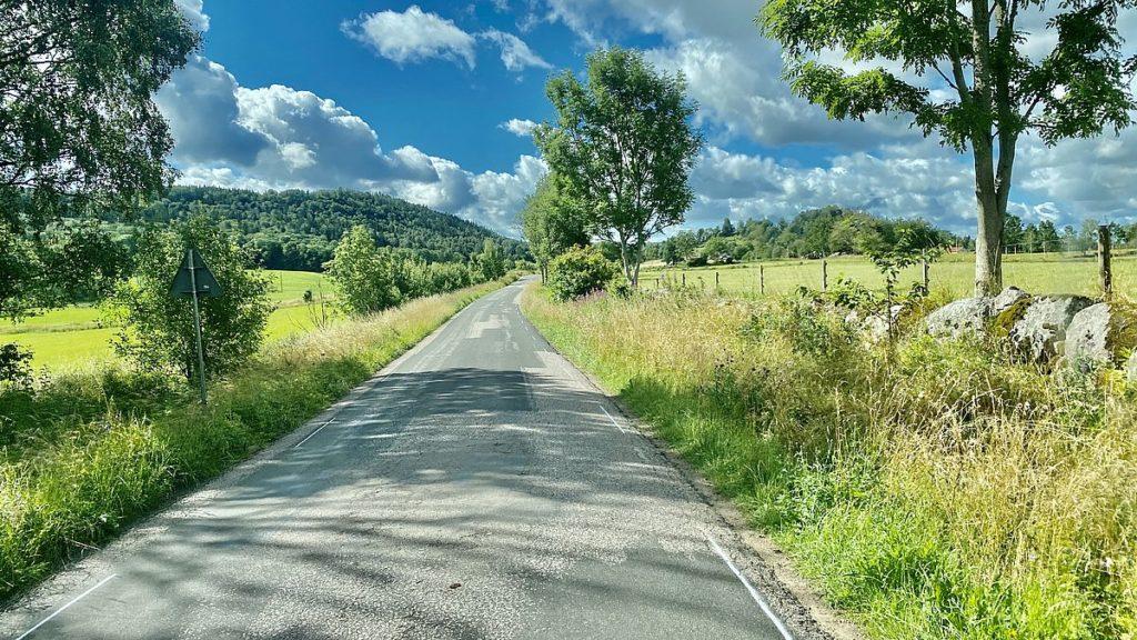 Bilväg i grönska