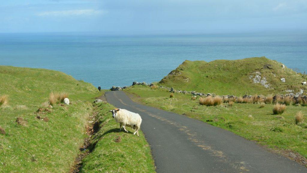 Väg Nordirland