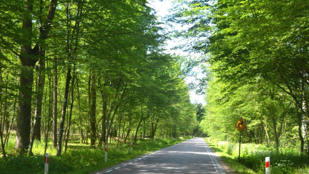 Bila i Europa - på gröna vägar i Polen