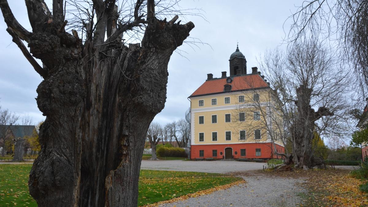Västerås Ängsö slott