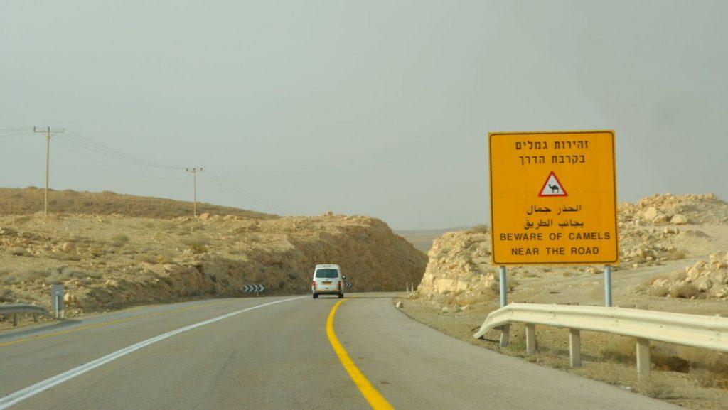 Varning för kameler