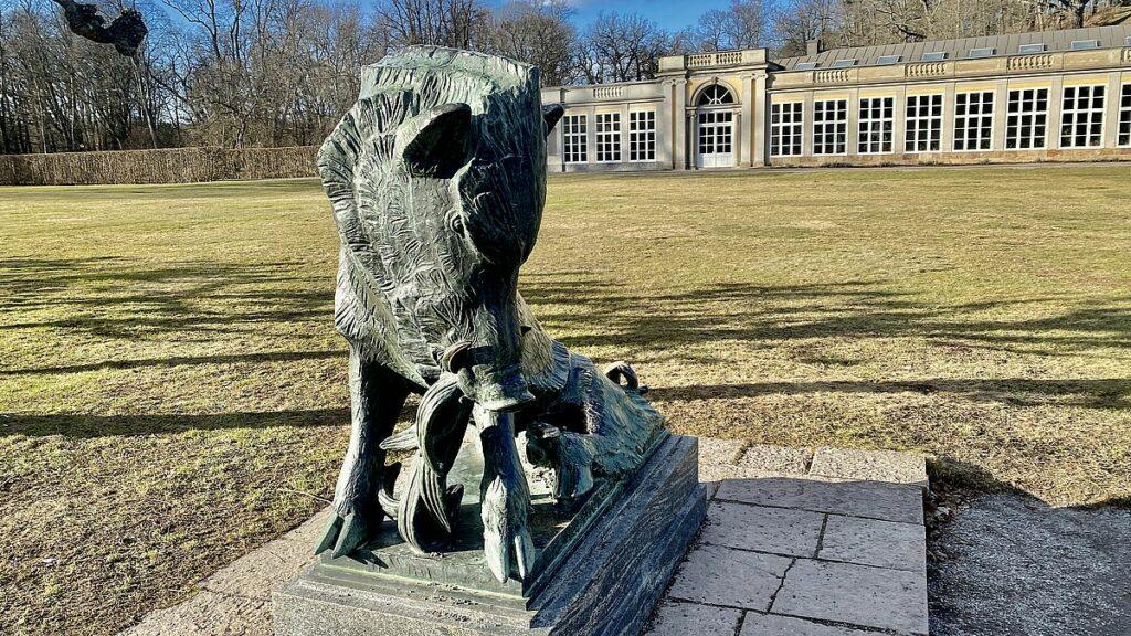 Vildsvin vid Ulriksdals slott
