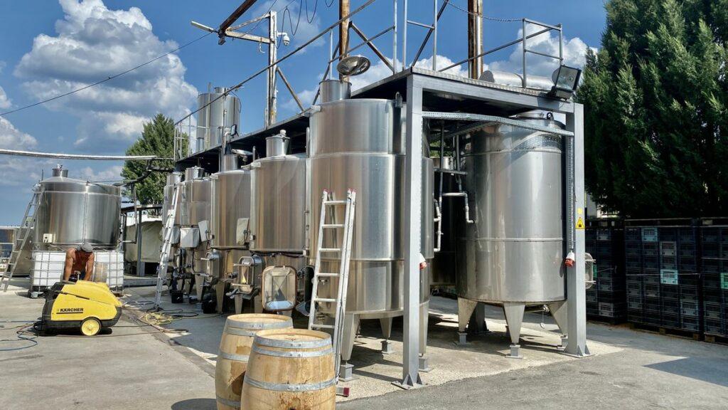 Göra i Varna i Bulgarien - vingård
