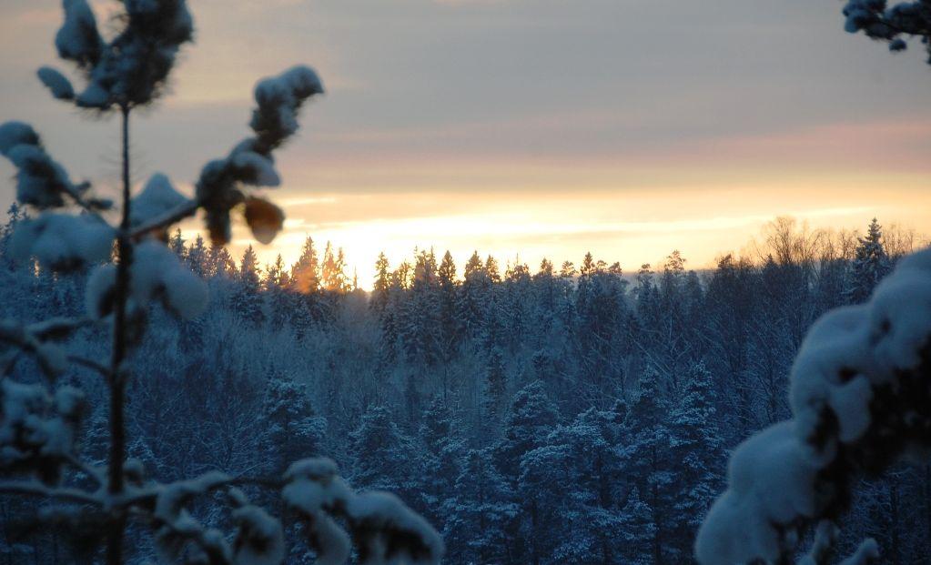 Vinter Finland