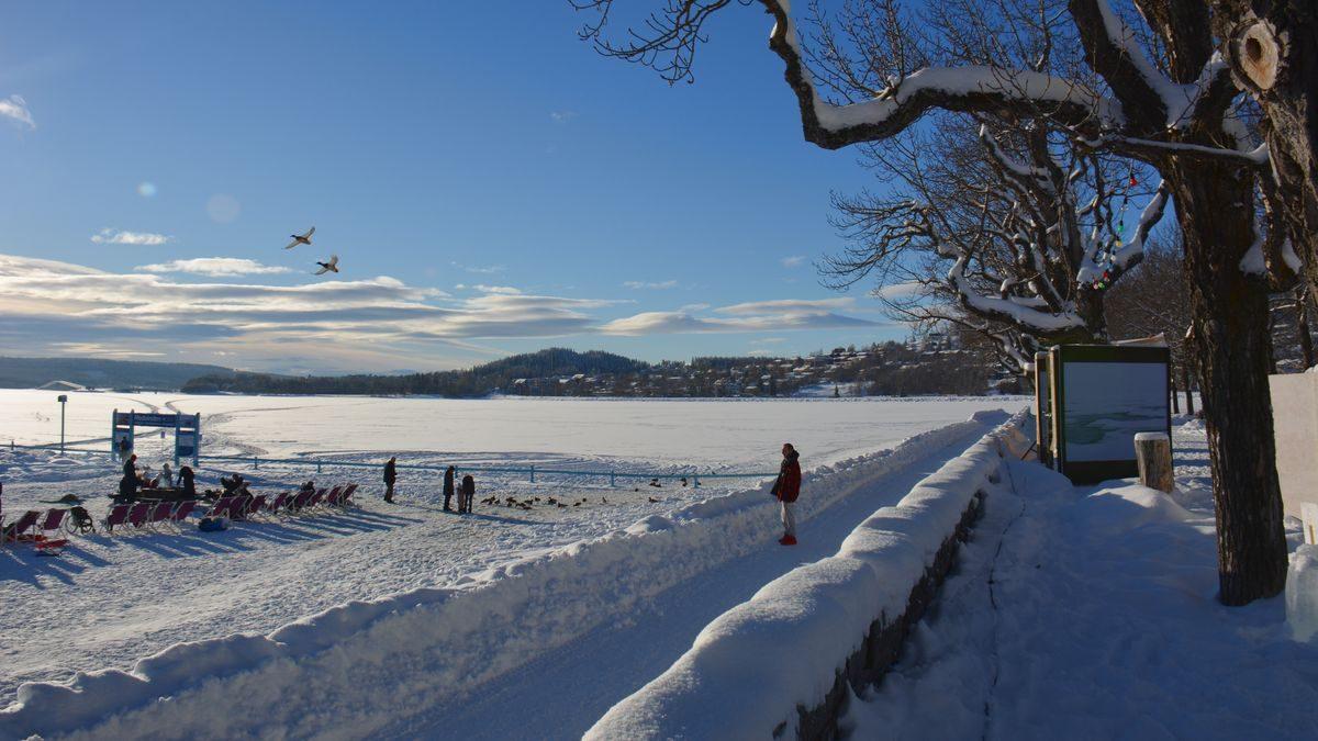 Vinterparken 2019
