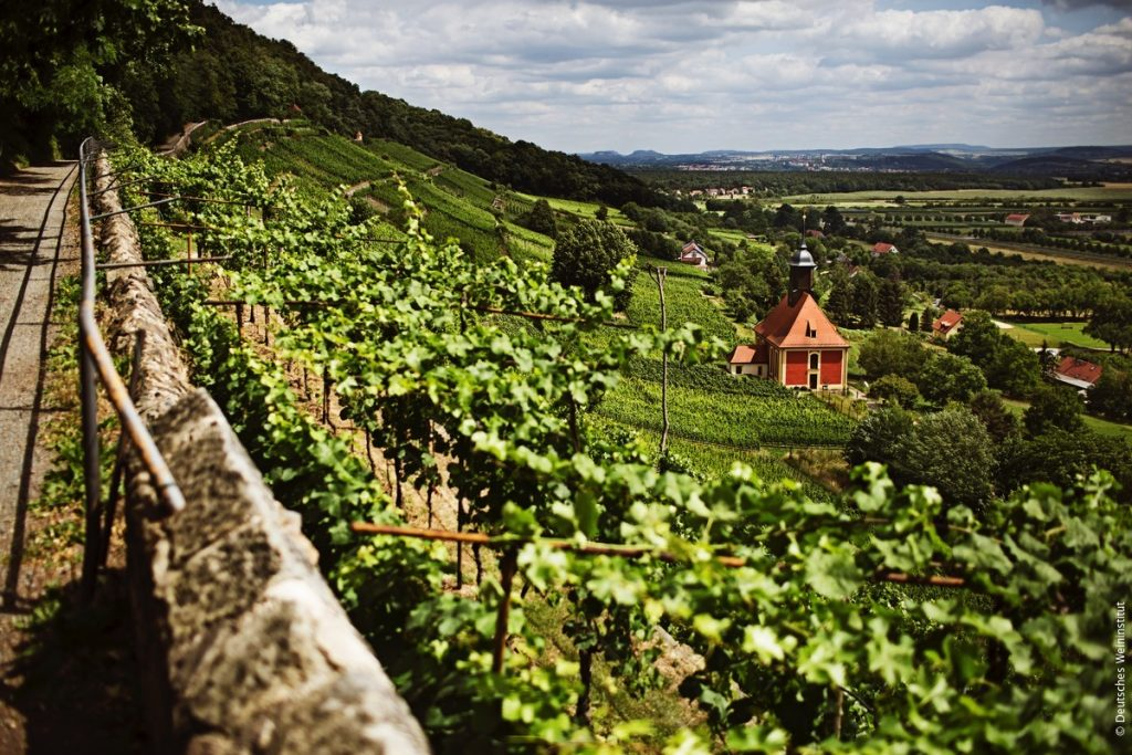 Vinfester i Tyskland