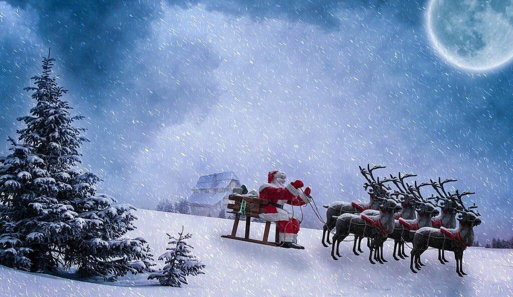 fakta om renar - Jultomtens renar