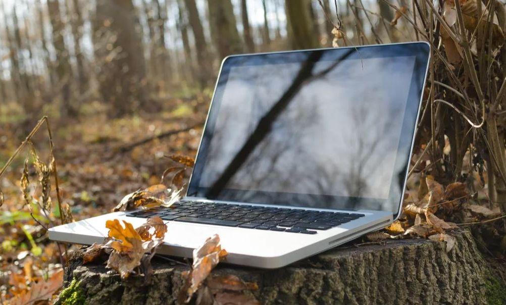 Blogga varje dag - eller inte