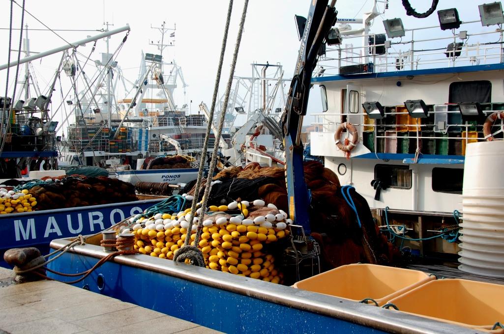 Fiskebåtar i hamnen i Pula