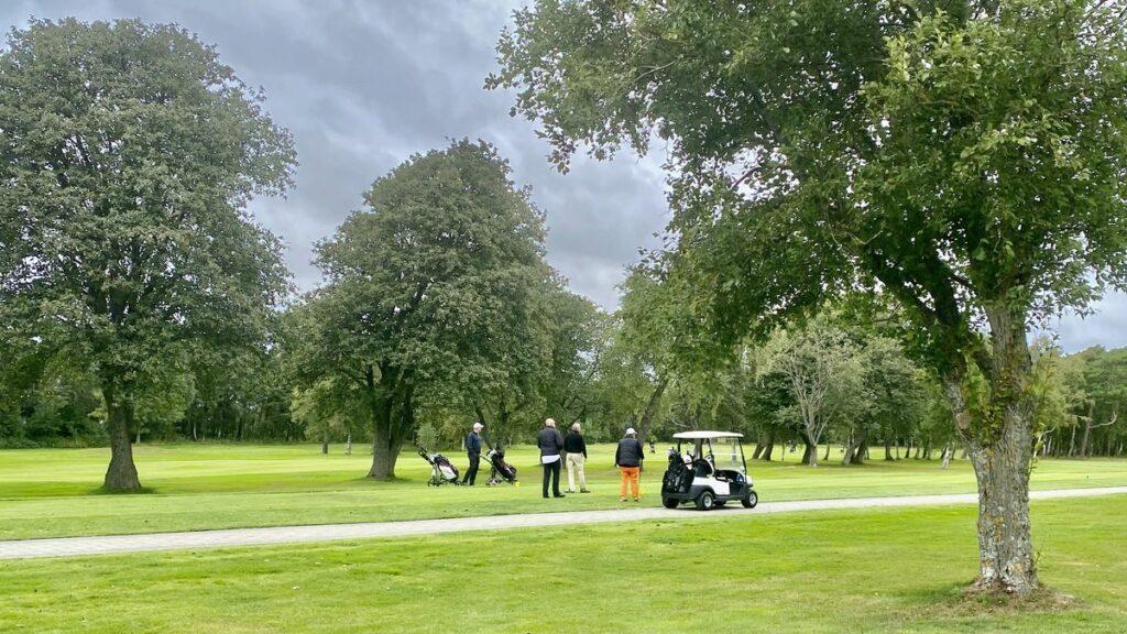Göra i Halmstad - golf