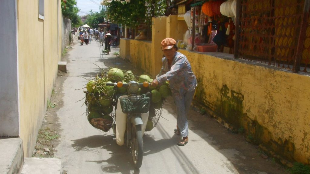 moppe Hoi An