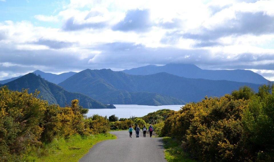 Nya Zeeland, på hike i Abel Tasman