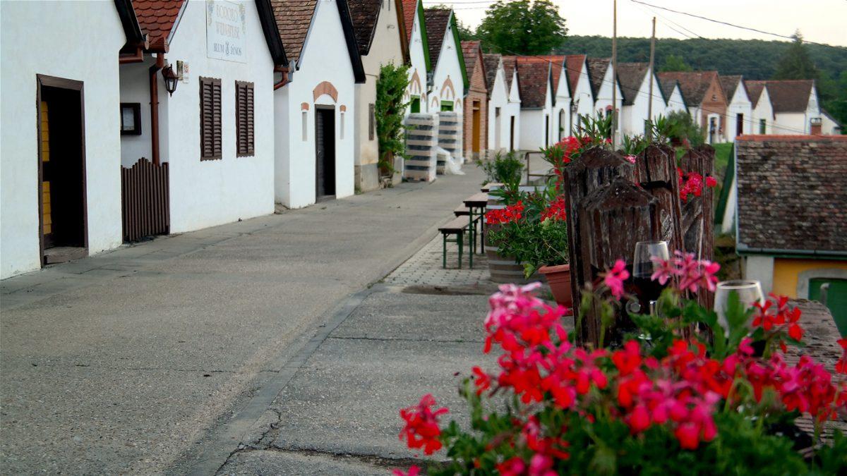 vinregion i södra Ungern
