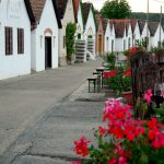 Termalbad och vinregion i södra Ungern