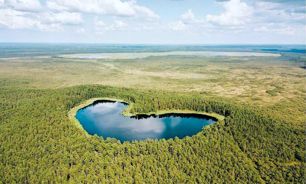 Fakta om Estland